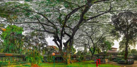 Jakarta Intercultural School, HS campus, by Scotty Graham